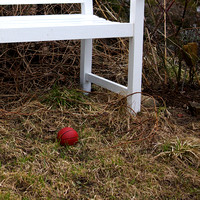 Mini basket ball at a bench in our garden
